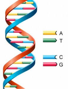 Genealogy and DNA ... be careful!