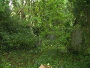 Genealogists need to be concerned with cemetery care