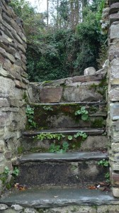 The picture of these steps was taken on one of my genealogy tourism trips to Cornwall.