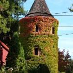 Korbel building tower