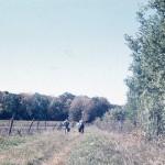 1878 Aunt Lils Farm walk small jpeg