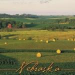 1878 Nebraska scene small