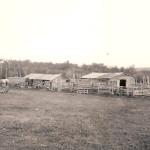 An Alberta farm in the early 1900s.