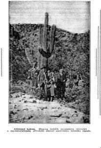 1934 Arizona Czech group