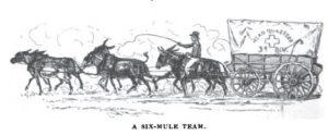 1934 six-mule team
